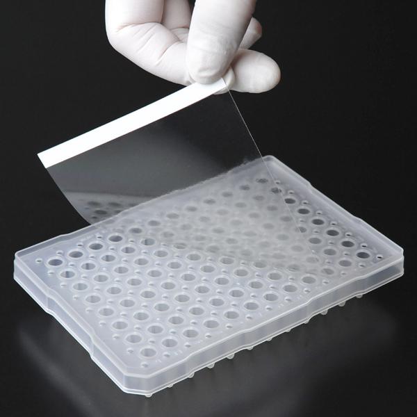 PCR透明封板膜